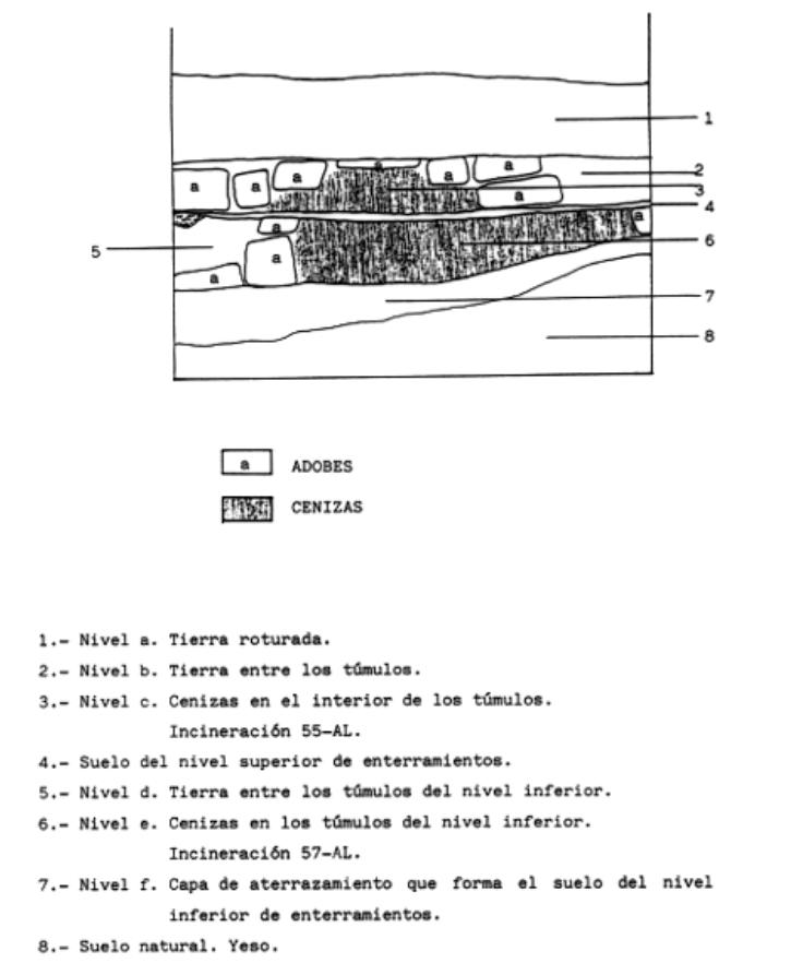 ig.2. Estratigrafía. Campaña 1990
